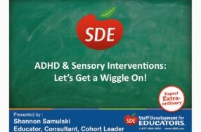 Archive of Shannon's Webinar: ADHD & Sensory Integration Interventions