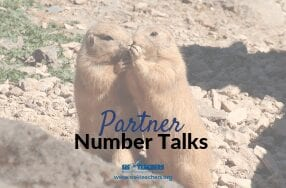 Partner Number Talks
