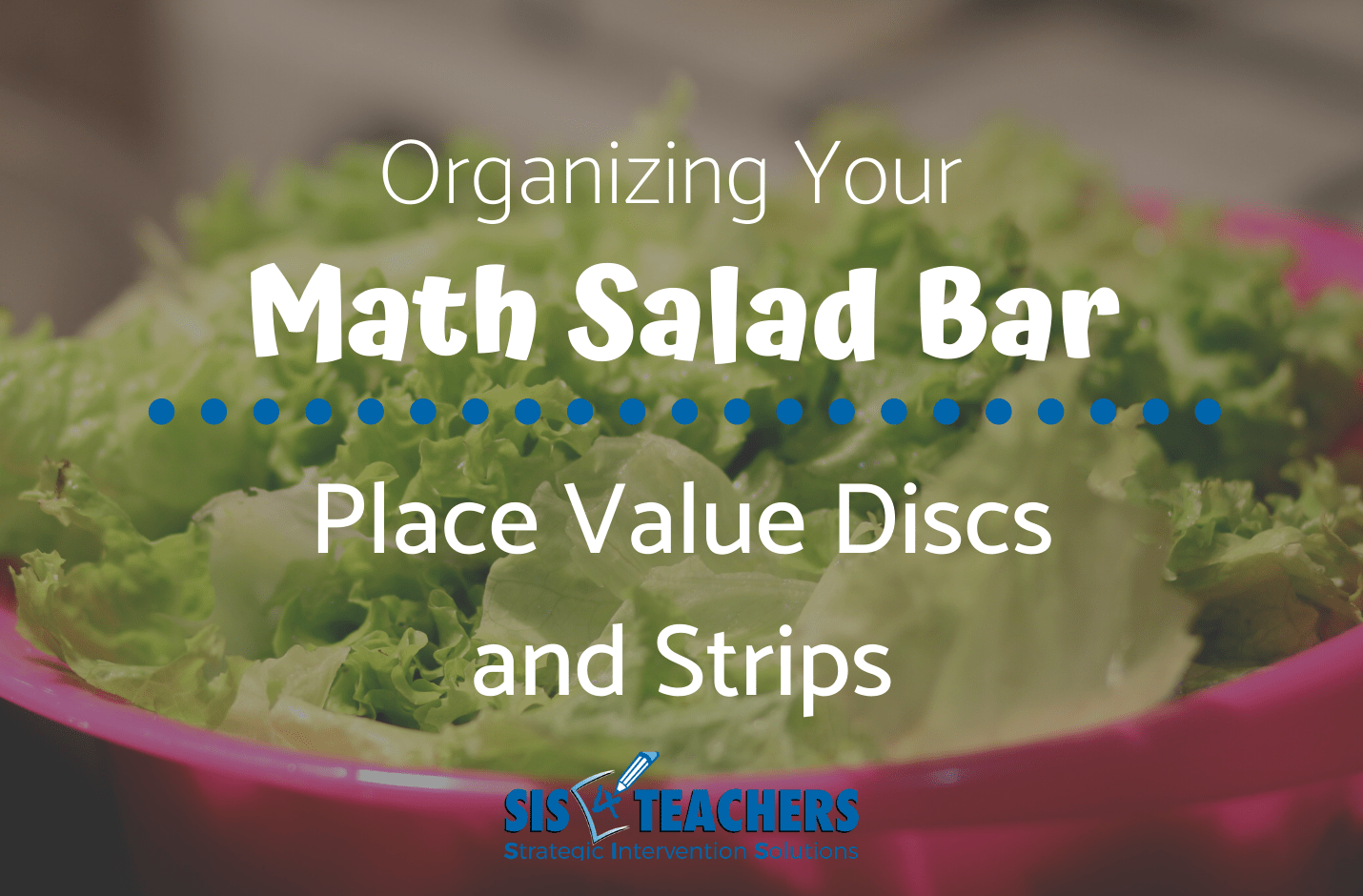 Organizing Your Math Salad Bar: Place Value Discs and Strips